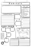 Habitats Food Chains Poster Template