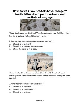 Habitats, Fossils, and Plants Oh My!