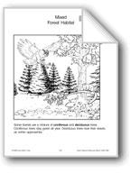 Habitats: Mixed Forest