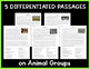 Non-Fiction Reading Passages & Questions: Animal Groups (NGSS 3-LS2-1)