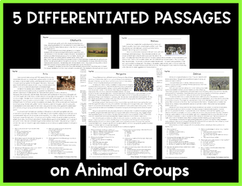 Animal Groups: Non-Fiction Reading Passages & Questions (NGSS 3-LS2-1)