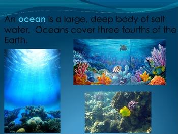 Habitats - Ocean
