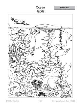 Habitats: Ocean