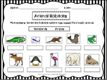 Habitats (Wetlands & Arctic)