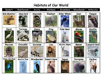 Habitats Picture Sort