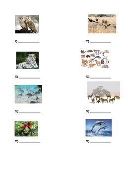 Habitats- Population or Community Quiz
