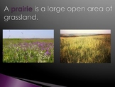 Habitats - Prairie