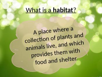 Habitats - Science