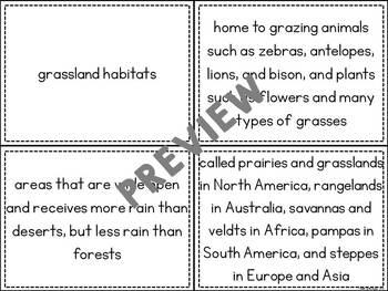Habitats Spoons Game
