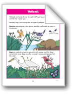 Habitats: Wetlands and Water Habitats