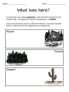 Habitats and Animal Adaptations - Grades 3-5