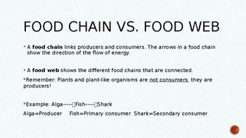 Habitats and Communities: Food Chains and Food Webs
