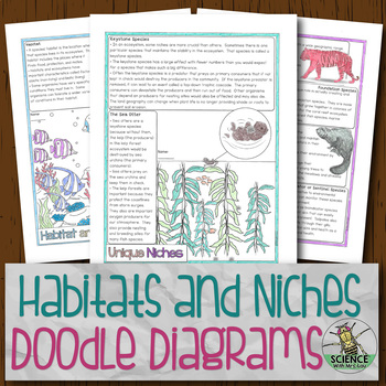 Habitats and Niches Doodle Diagrams