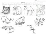 Habitats cut and paste activity
