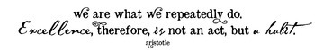 Habits Aristotle Excellence Quote