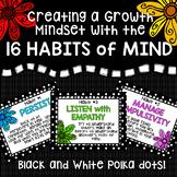 Habits of Mind, Black and White Polka Dot
