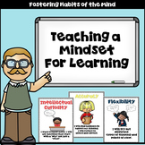 Habits of Mind Posters! Bulletin Board! Participation! Thinking Skills!