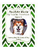 Hachiko Waits - Pet Owner Responsibiities and Dog Training