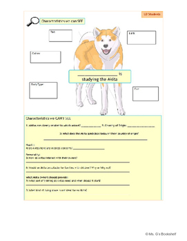 Hachiko Waits - Pre-Reading - Studying the Akita - Full Lesson Plan & Materials