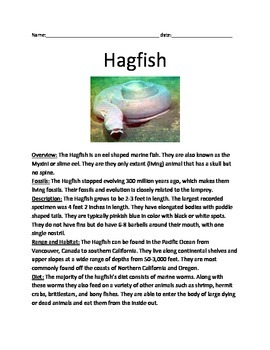 Hagfish - informational review article facts questions vocabulary lesson