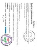 Hail Mary Vocabulary Activity - Religion/Language Arts