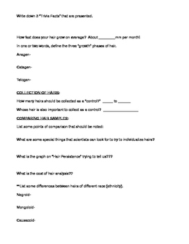 Hair Analysis Video Answer Sheet for Forensics