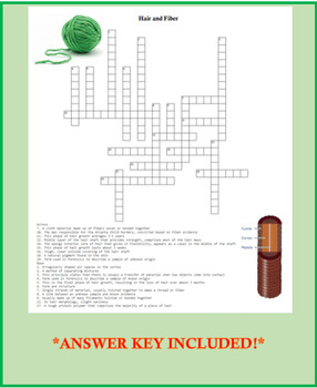 Forensic Hair and Fiber Analysis Crossword Puzzle Review