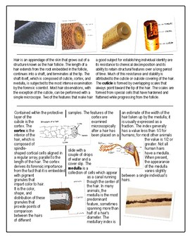 Hair and Fiber Evidence w/key