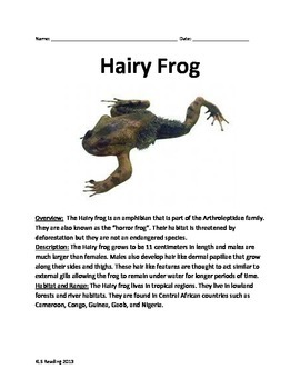 Hairy Frog - amphibian rare - Informational Article questi