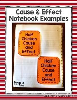 Half Chicken Supplemental Activities