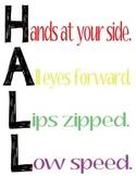 Hall Line Up Procedures