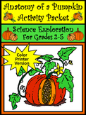 Halloween Science Activities: Anatomy of a Pumpkin Activity Packet - Color