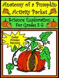 Halloween Science Activities: Anatomy of a Pumpkin Activit