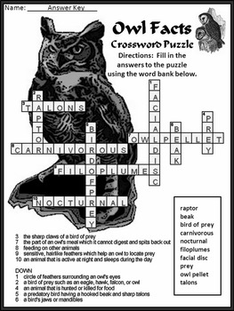 Halloween Reading Activities: Owl Facts Science Activity 2nd-3rd Grade - B/W