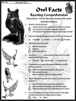 Halloween Reading Activities: Owl Facts Activity Packet 4th-6th Grade