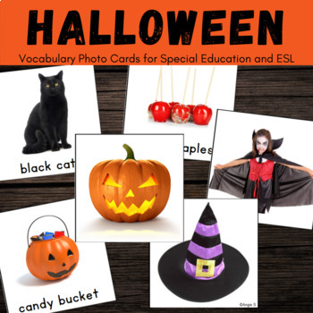 Halloween Vocabulary Photo Cards