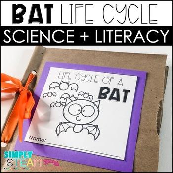 Bat Close Reading