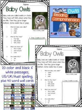 Halloween Activities: Halloween Worksheets Kindergarten Bundle