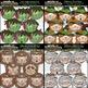 Halloween Faces Clip Art & Line Art MEGA BUNDLE  - ONLY $2