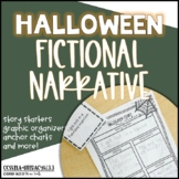 What is a Fictional Narrative?
