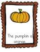 Halloween Fun:  Interactive Emergent Readers