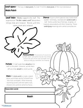 Halloween-Inspired Root Word Practice