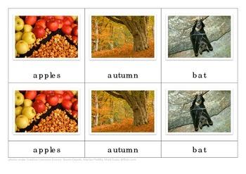 Halloween Montessori Nomenclature Cards