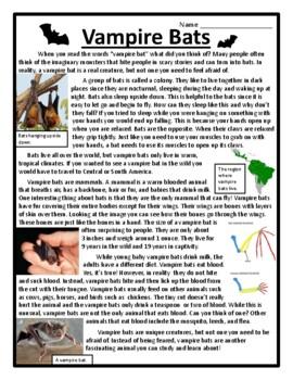 Vampire Bats Nonfiction Text Features Passage Bats Text Features Bats Story