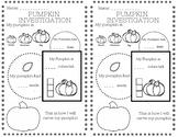 Halloween Pumpkin Investigation