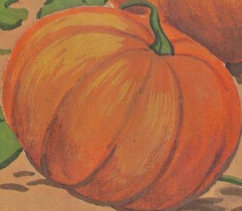 Halloween Pumpkin Story w/ 7 Multiple Choice Reading Comprehension Qs