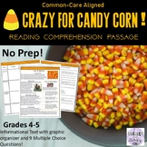 Digital Halloween Reading Comprehension