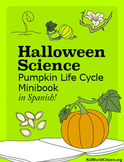Halloween Science: Pumpkin Life Cycle Minibook in Spanish