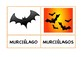 Halloween Singular/Plural