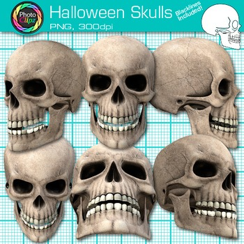 Halloween Skull Clip Art {Human Body Systems for Science R
